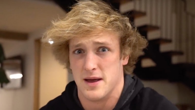 Logan Paul Wealth
